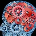 Concentration - Cerveau 1